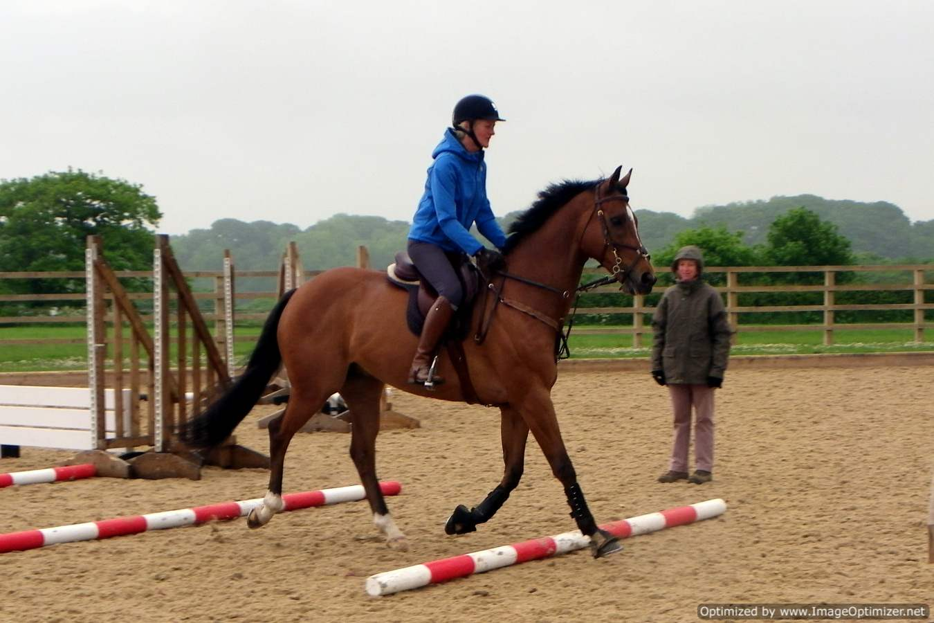 Sally & Scout Polework
